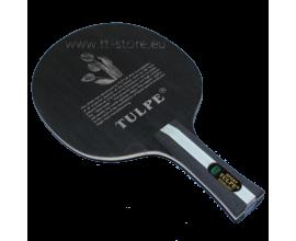 Tulpe 703