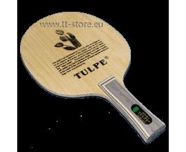 Tulpe 7007