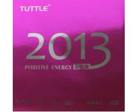 Tuttle / Positive Energy 2013