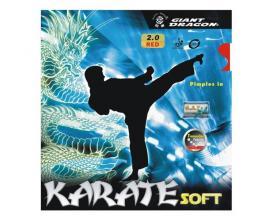 Giant Dragon / Karate Soft