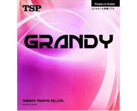 TSP / Grandy