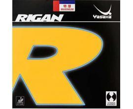 Yasaka / Rigan